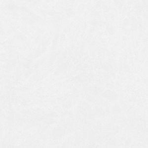 Bianco Elegante (Arenastone)