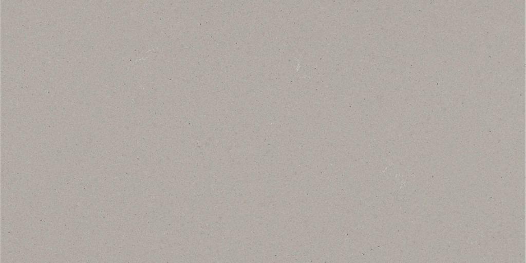 Raw Concrete (Caesarstone)